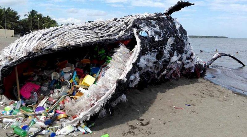 balena-plastica